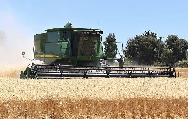 Фото: поле пшеницы (Pixabаy)
