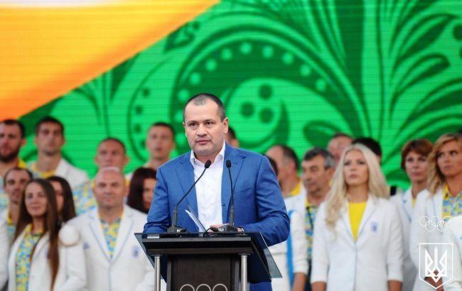 Палатный призвал Кабмин пересмотреть позицию по финансированию спорта