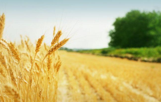 Фото: Україна і Ізраїль наростять співробітництво в агросфері