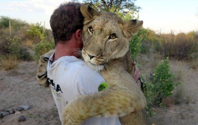 Фото: Человек обнимается со львом (SamoSoboj.ru)