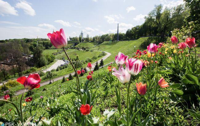 В Украине сегодня ожидается жара до +31