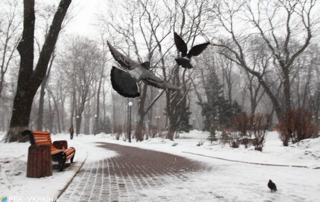 Погода в Украине изменится уже завтра: прогноз