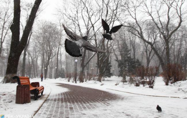 Дощі, мокрий сніг та до -10: прогноз на перші дні грудня