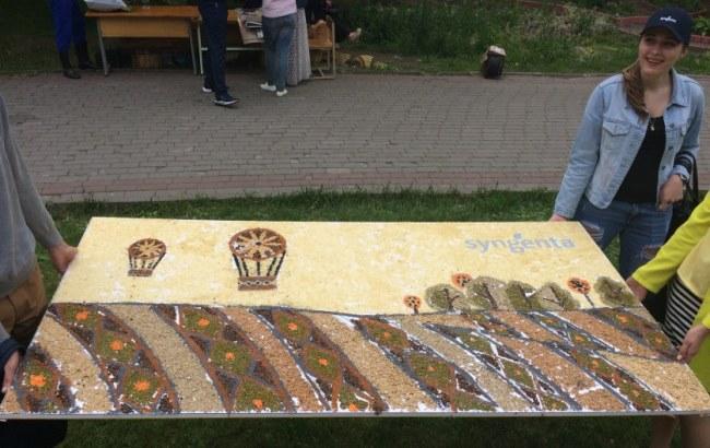 В Виннице создали уникальную картину из семян
