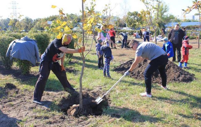 «Купил машину? Посади дерево!»: Тойота-Украина инициировала озеленение Киева