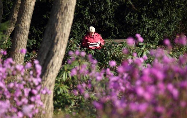 В Украине запустили автоматическое назначение пенсий