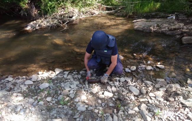 Пиротехники ГСЧС с начала года изъяли более 28,6 тыс. боеприпасов