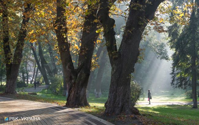 Фото: бабье лето (РБК-Украина)