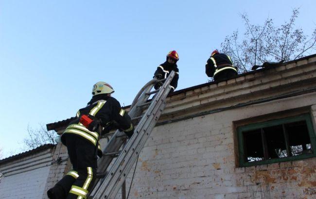 В Киевском зоопарке произошел пожар, часть животных эвакуировали