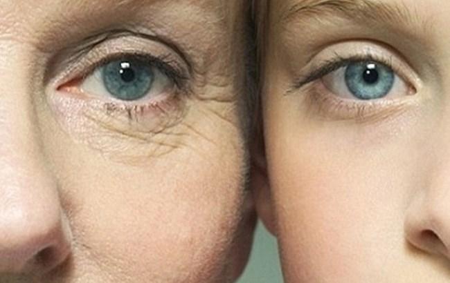 Фото: Старение и молодость (infosmi.net)
