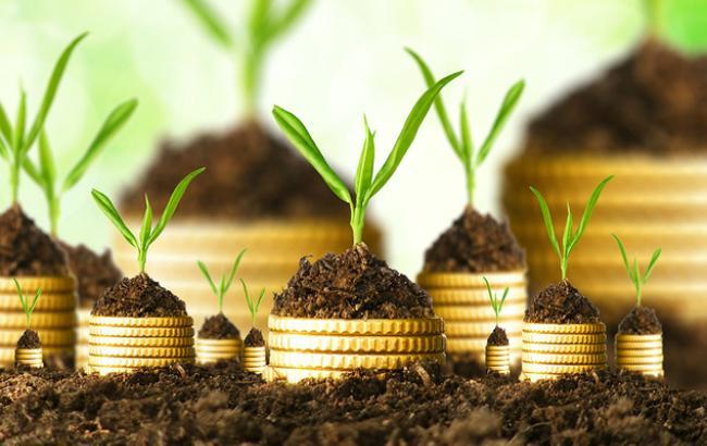 Фото: іноземні інвестиції в Україну трохи зросли