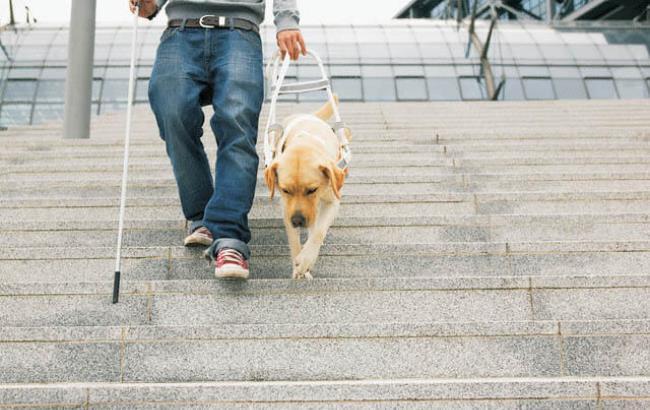Фото: Незрячий с собакой