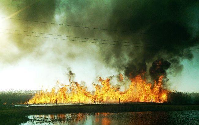 ЄС готовий надати підтримку Україні для боротьби із пожежами в Чорнобильській зоні