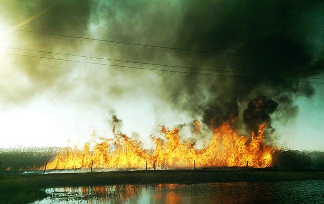 Фото: пожежа в степу (kyivobl.dsns.gov.ua)