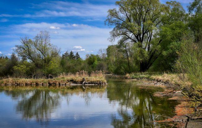 Каскады озер и весенние пейзажи: лучшие локации для пикника рядом с Киевом
