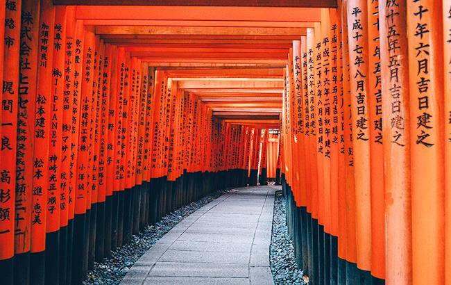 Фото: Япония (unsplash.com/Lin Mei)