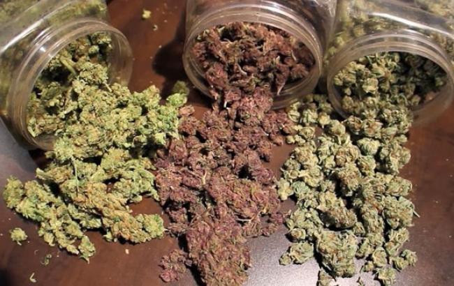 Фото: В интернет-магазине предлагают несколько видов товара (jahgrow.com)