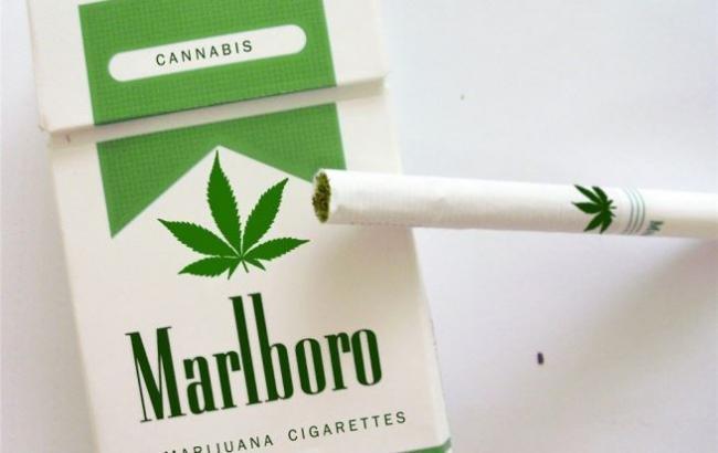Марихуана или сигареты конопля плод и семян