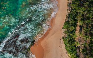 На Шри-Ланке начался туристический бум. Сколько стоят путевки для украинских туристов