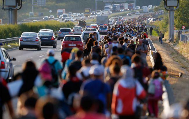 За сутки из Турции в Грецию прибыли более 500 беженцев