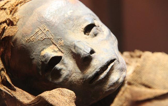 Вчені вперше розшифрували ДНК давньоєгипетських мумій
