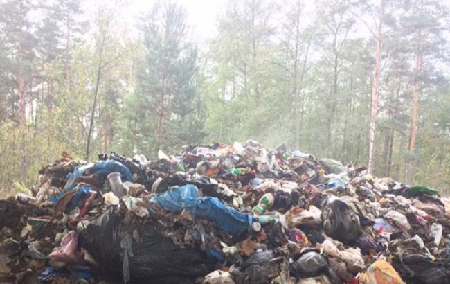 Фото: Сміття зі Львова знайшли у волинському лісі (facebook.com)