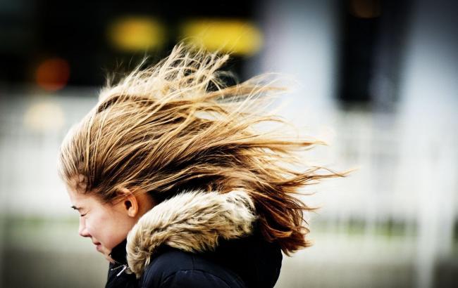ГСЧС предупредила осильных порывах ветра вКиеве