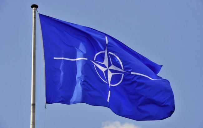Фото: НАТО схвалив новий план кіберзахисту