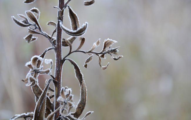 """В Украину движется лютый холод с """"минусами"""": как долго будет непогодить"""