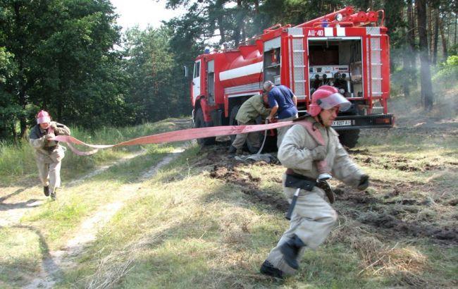 Фото: пожежники в лісі
