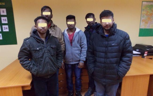 Пограничники задержали на западной границе 14 нелегальных мигрантов