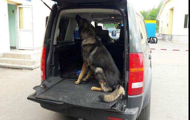 Фото: выявить патроны помогла служебная собака (пресс-центр ГПСУ)