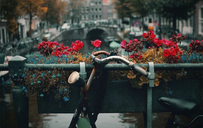 Колоритные отели и домики 17 века. Во сколько обойдется путешествие в Амстердам после рекордного спада цен