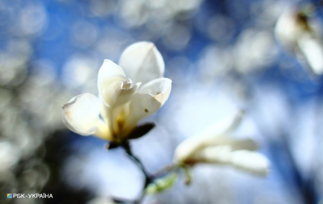 Весна в Україні настане набагато раніше: синоптик ошелешив заявою