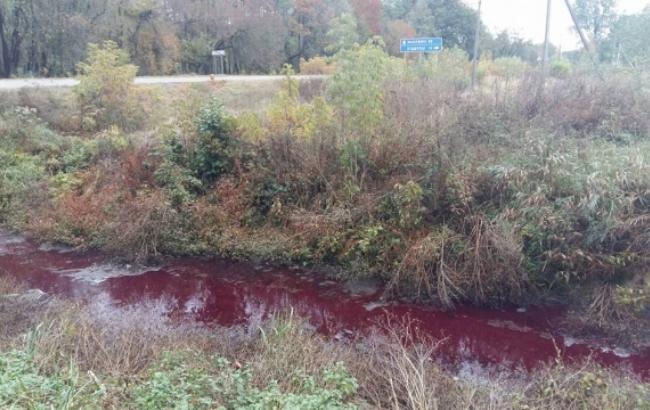 """Фото: """"Кривава ріка"""" у Волинській області (volyn24.com)"""