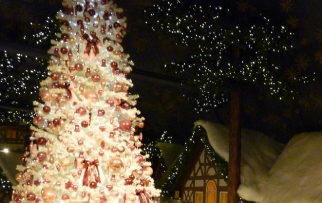 Зимняя сказка на ВДНХ: северные олени и резиденция Деда Мороза