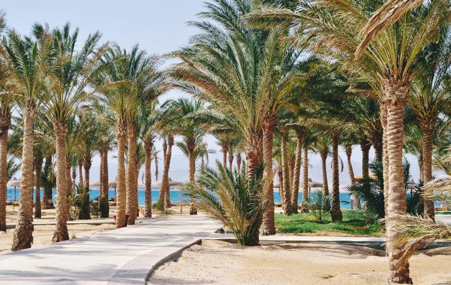 Туры стремительно дешевеют: Египет в сентябре удивляет низкими ценами на отдых