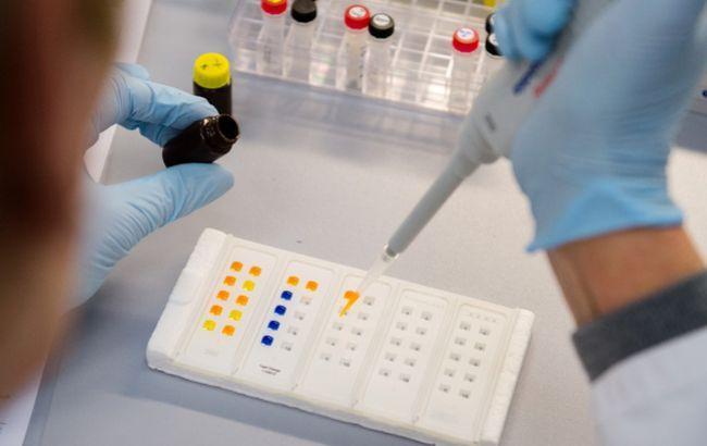 Учёные получили доказательства связи вируса Зика с неврологическими нарушениями