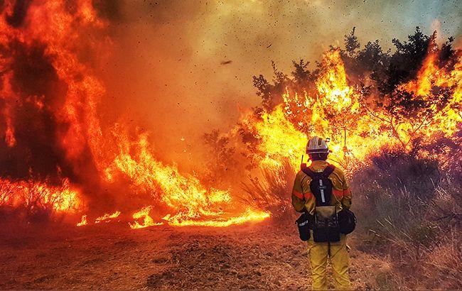 Фото: лісова пожежа (twitter.com/Pedro Abranches Mate)