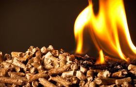 Депутати впевнені, що біопаливо стане вигідною альтернативою природному газу