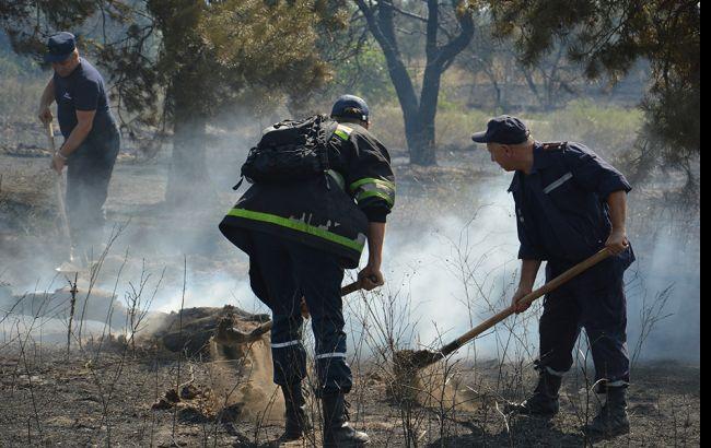 Спасатели ликвидировали лесной пожар в Днепропетровской области