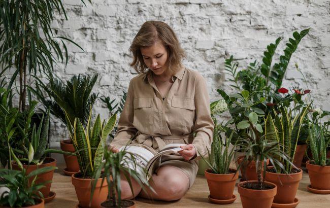 Как помочь растениям пережить жару: этот прибор должны иметь все