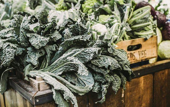 Детокс и витамины: нутрициолог назвала травы и листовые овощи, незаменимые весной