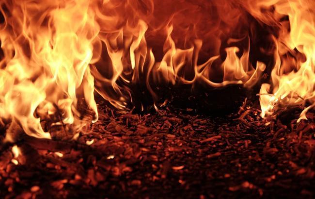Фото: пожар (unsplash.com/raquel raclette)