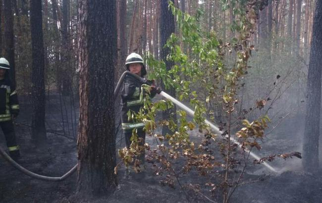 Пожар в Киеве: в ГСЧС сообщили подробности