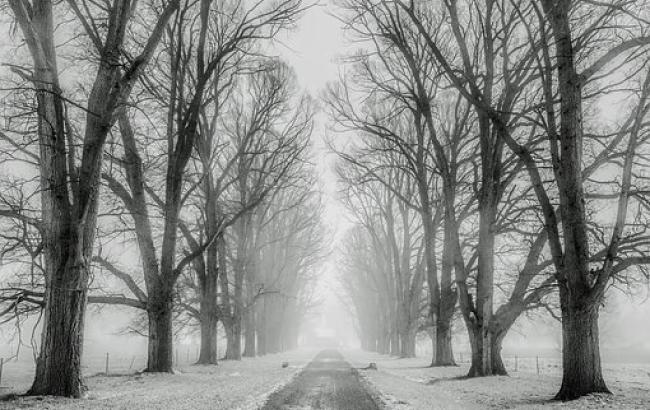 Морозна погода: синоптики дали прогноз на 17 грудня
