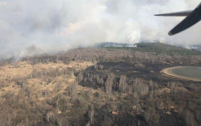 В Чернобыльской зоне горит лес