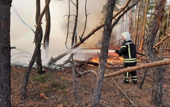 У Луганській області через пожежі детонують не розірвані снаряди