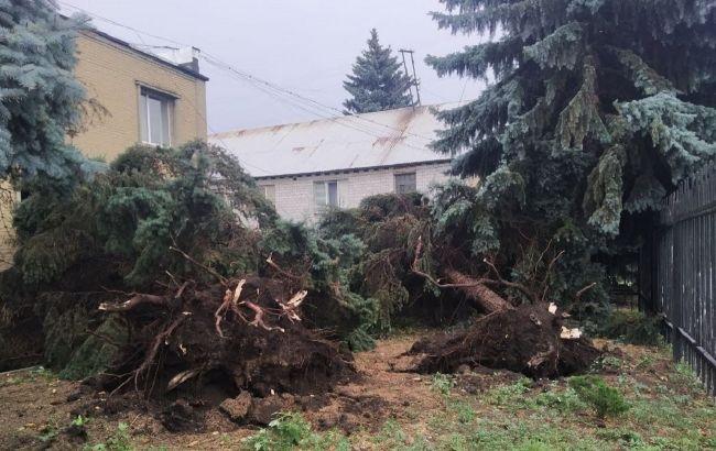 Через негоду в Україні загинули двоє людей, ще семеро потрапили в лікарні