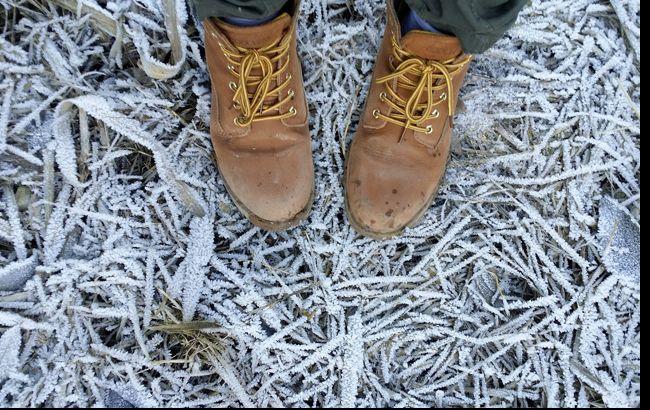 У Карпатах знову пішов сніг